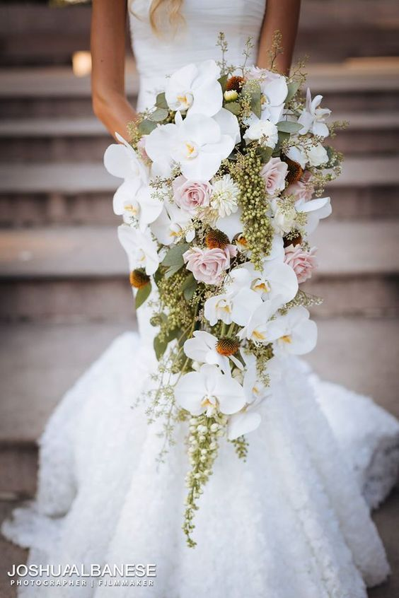 Wedding Bouquet Orchid Ideas : Best ideas about orchid bouquet on white