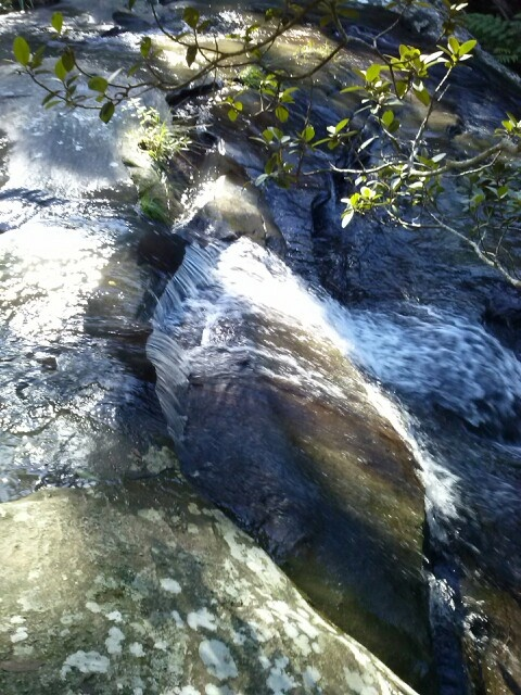 Waterfall -Little Flaggy Creek