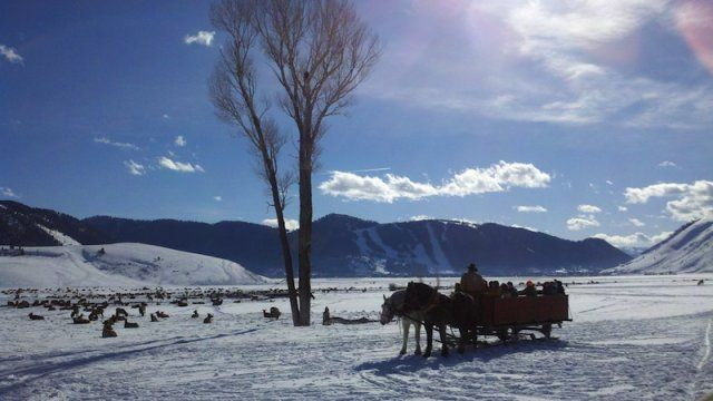 Top 10 Winter Activities for Non-Skiers in Jackson Hole - Jackson Hole Central Reservations Blog