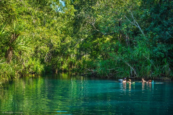 Photographing Berry Springs Nature Park | Northern Territory, Australia - By Racheal Christian - rachealchristianphotography.com/berry-springs
