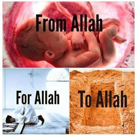 be with god: from allh to him