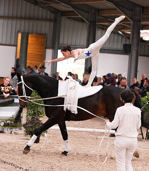 17 Best Images About Vaulting On Pinterest Dance