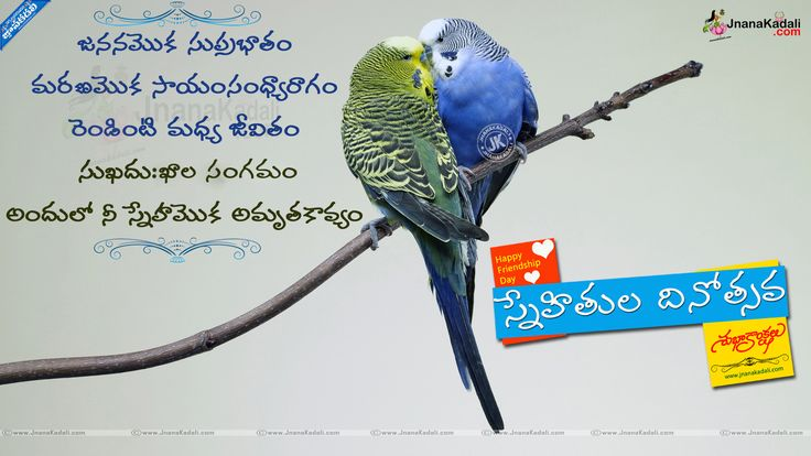 Telugu Best Friendship day 2015 SMS and nice WhatsApp images, new Telugu friendship Messages with Nice Images, Never Change in our Friendship, Best Friendship Quotes in Telugu, Telugu Sneham Images online.