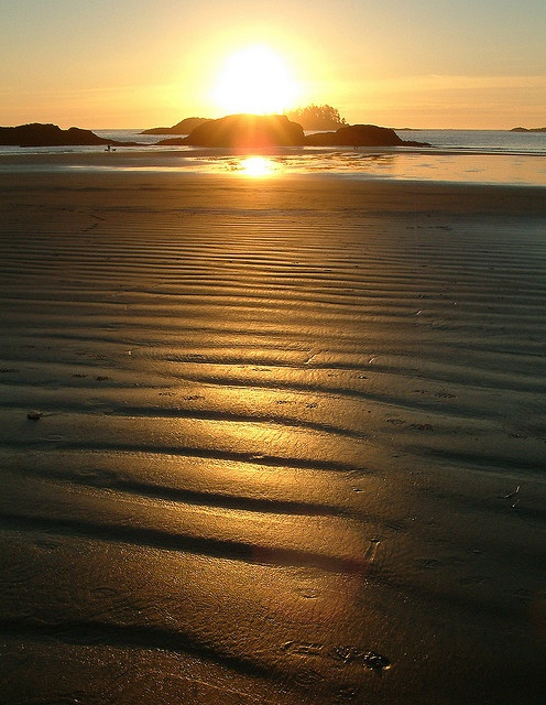 Tinwis, nr Tofino Vancouver Island My favorite beach in that area. Been FAR too long sinse my feet have felt this sand.