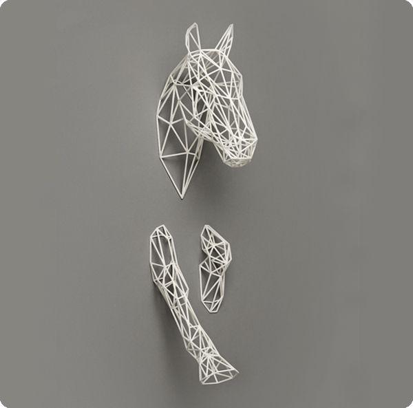 Paard Equus wit