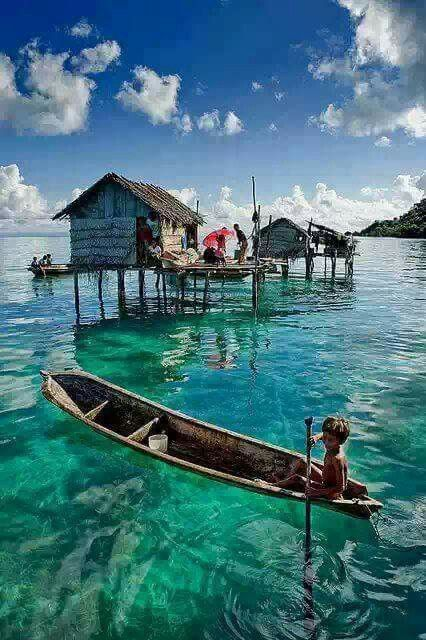 Water like ving, Indonesia