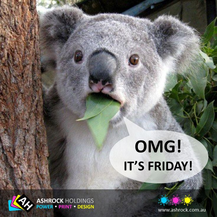 TGIF !!!! Have a great Friday everyone & an awesome weekend. #tgif #ff #weekend