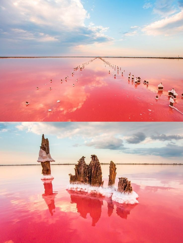 Soyashskoe lake in Kerch, (Crimea). Located in the Opukske Reserve, Lake Koyashske is considered to be the saltiest in Crimea – a liter of its water contains 350 grams of salt. The lake's main highlight is its changing-colour properties that depend on the season(when it's hot, the water is pink-coloured). The unusual color of the lake is due to the microscopic algae living in the water.   Photo credit: Sergey Anashkevitch