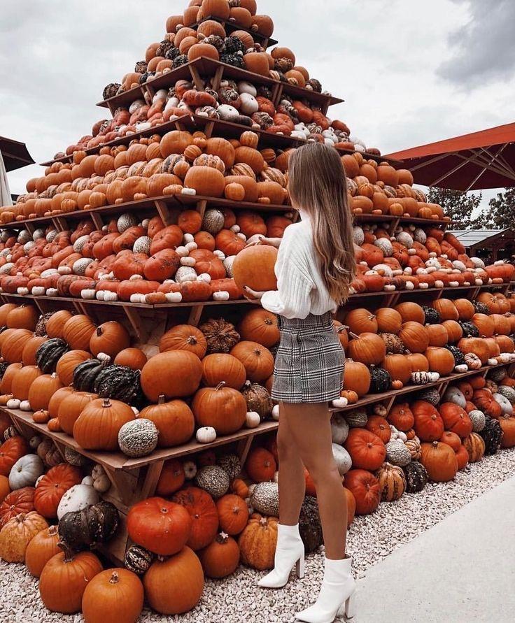 (notitle) – Herbst