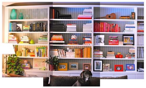 A bookshelf obsession