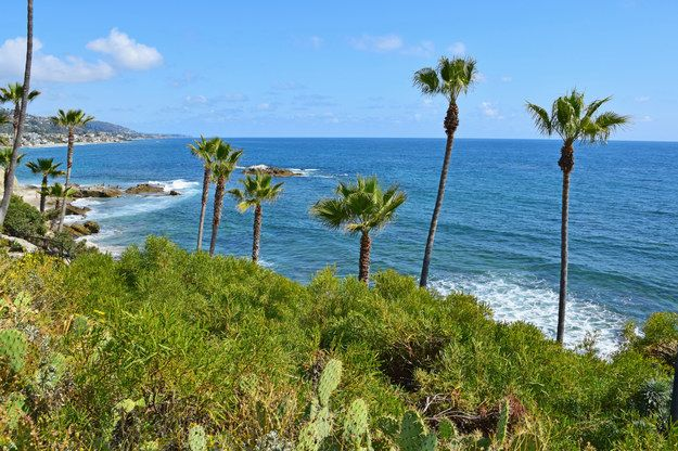1. Announce your arrival on Instagram with an establishing shot in Heisler Park. | Here Are 22 OC Things You Have To Do In The OC