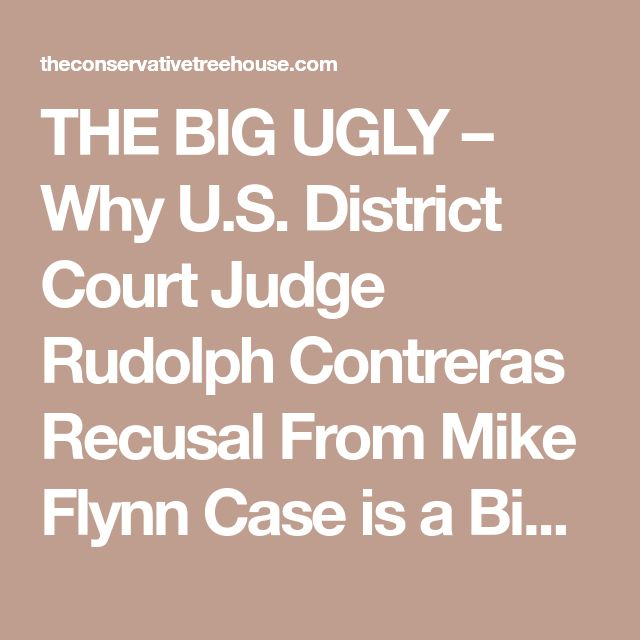 District court on pinterest berlin photography facade design the big ugly why us district court judge rudolph contreras recusal from mike flynn case fandeluxe Choice Image