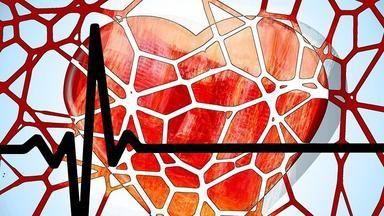 Když krev stůně, tělo se ozve: jak se hlásí 4krevnínemoci
