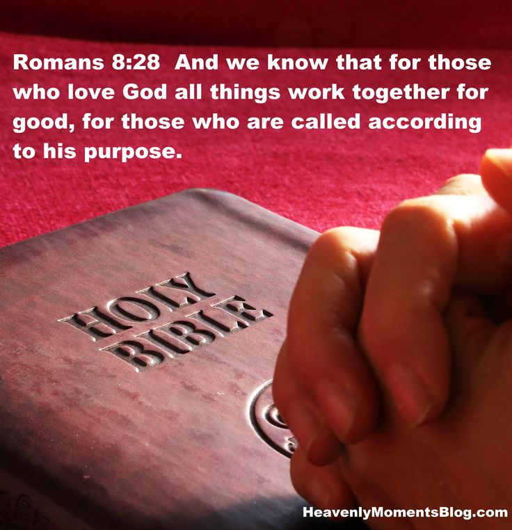 Romans 8:28  And we know that for those who love God all things work together for good, for those who are called according to his purpose. #Jesus #Christ #Christian #God #Bible #verse #scripture #church