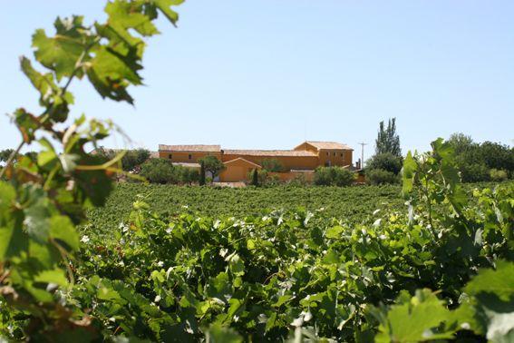Bodegas Meler | D.O. Somontano, Spain