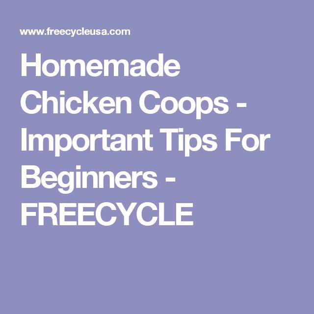 Homemade Chicken Coops - Important Tips For Beginners - FREECYCLE