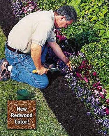 Raised Garden Bed Ideas Cheap