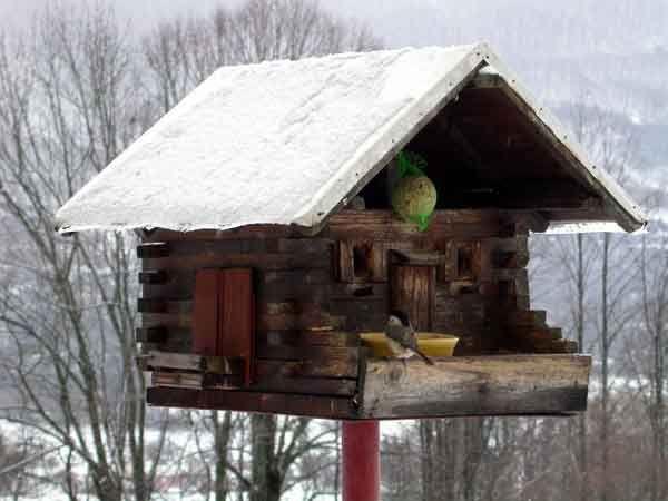 maison d 39 oiseaux for the birds pinterest. Black Bedroom Furniture Sets. Home Design Ideas