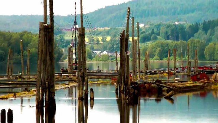 Fetsund lenser og våtmarkssenter i Nord-Europas største elvedelta