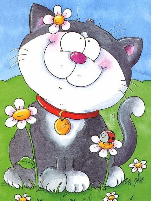 gatos - Pililucha -