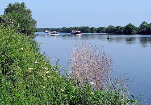Wandelen Bij Vierlingsbeek Noord Brabant Natuur Nederland