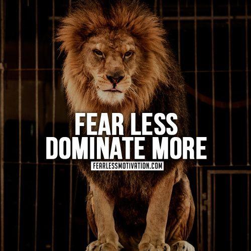 Dbz 1080p Wallpaper Best Dbz Quotes Best 25 Lion Quotes Ideas On Pinterest Motivational