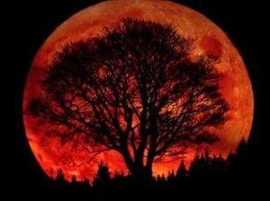 """L'éclipse solaire du 28 septembre  2015 : L'alignement avec le soleil devrait donner à la lune une teinte rouge cuivrée particulière.  Elle est alors surnommée """"Lune de Sang"""" ou Lune rouge. C'est la conjonction de ces deux phénomènes astronomiques qui rend l'événement exceptionnel.  Ce type d'éclipse se produit rarement et la prochaine visible depuis la France aura lieu en 2033."""