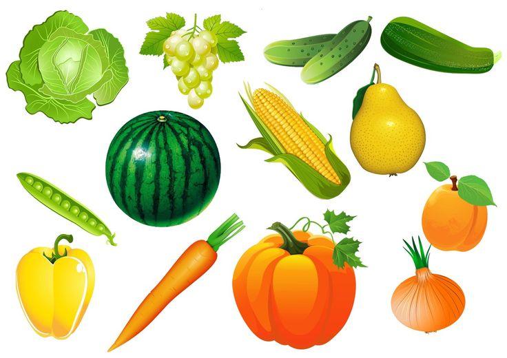 Овощи и фрукты картинки для детей цветные