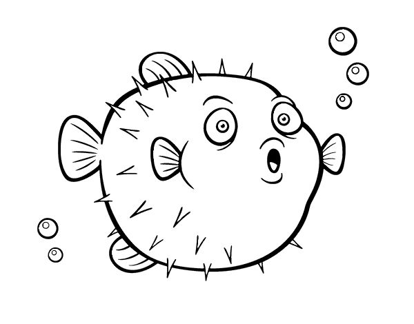 Pufferfish coloring page - Coloringcrew.com