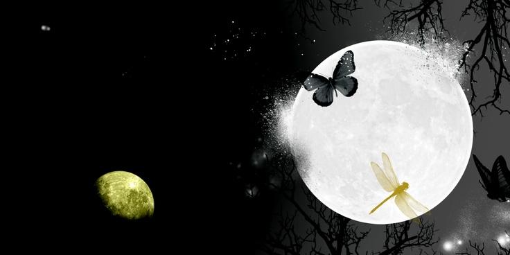 Η Αομάμε σήκωσε το ποτήρι της προς το μέρος του φεγγαριού και το ρώτησε:  «Έχεις κοιμηθεί αγκαλιά με κάποιον τελευταία;»  Το φεγγάρι δεν απάντησε.    1Q84