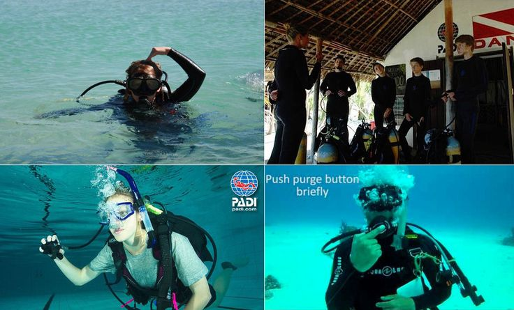 Four ways to refresh your scuba skills. #scubadiving #scuba