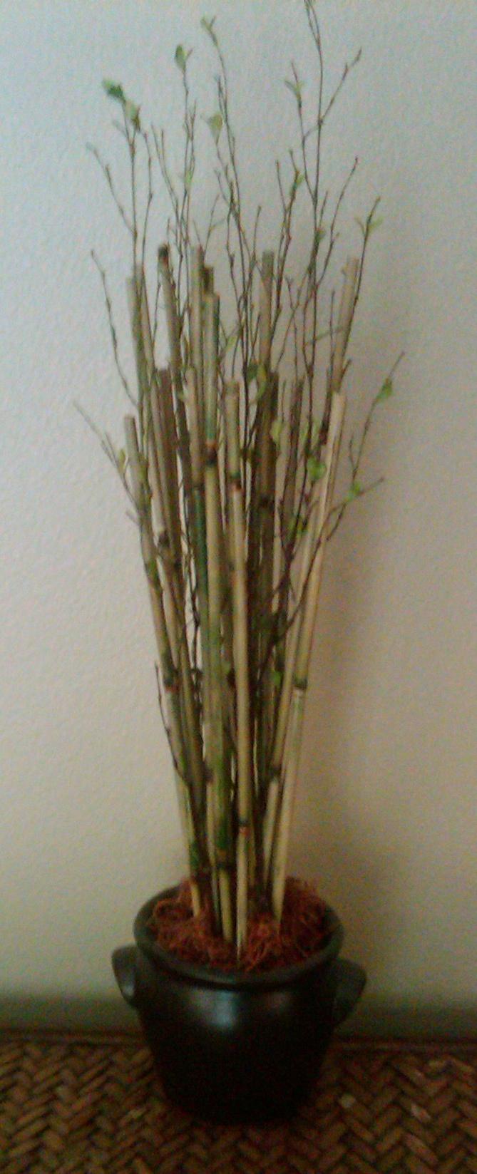 diy bamboo planter bamboo ideas pinterest