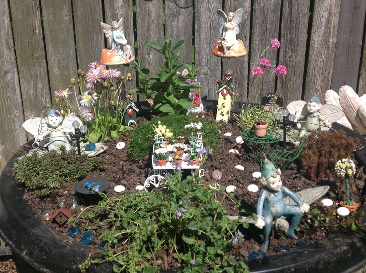 Had to start a new Fairy Garden.  Have changed it around and it has grown since this pic!!