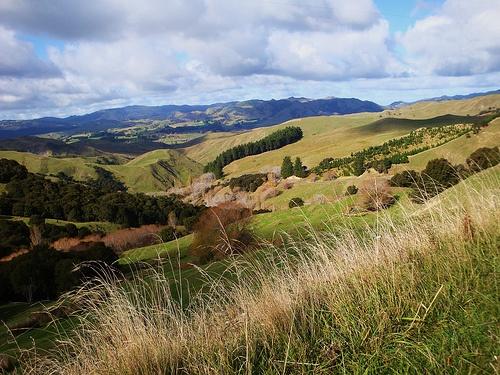 Back Country New Zealand  Wairarapa