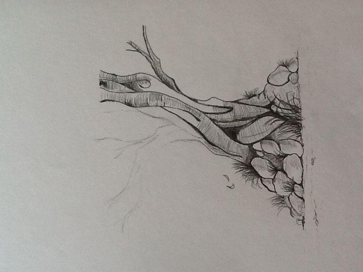 Træ tegning 2