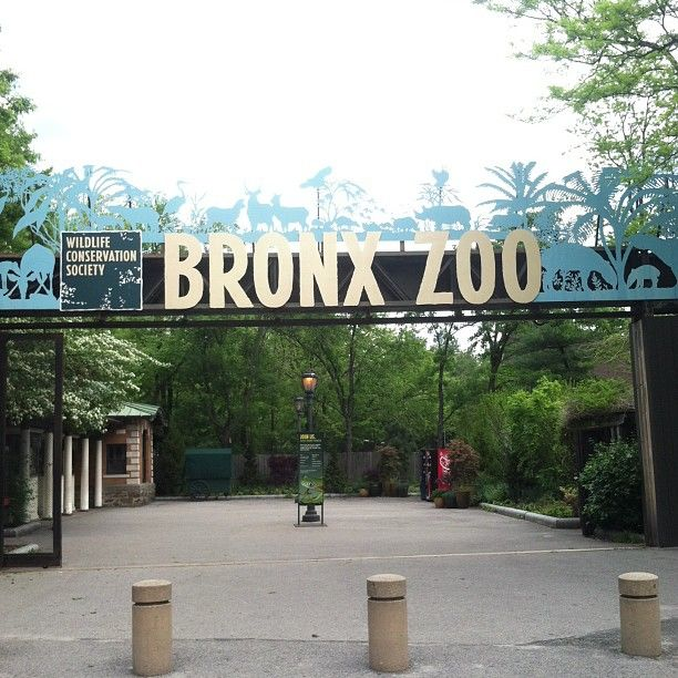 The one and only Bronx Zoo!