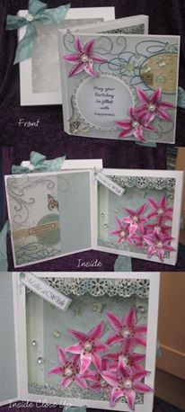 Aperture box cards and Lily Stamps by Chloe
