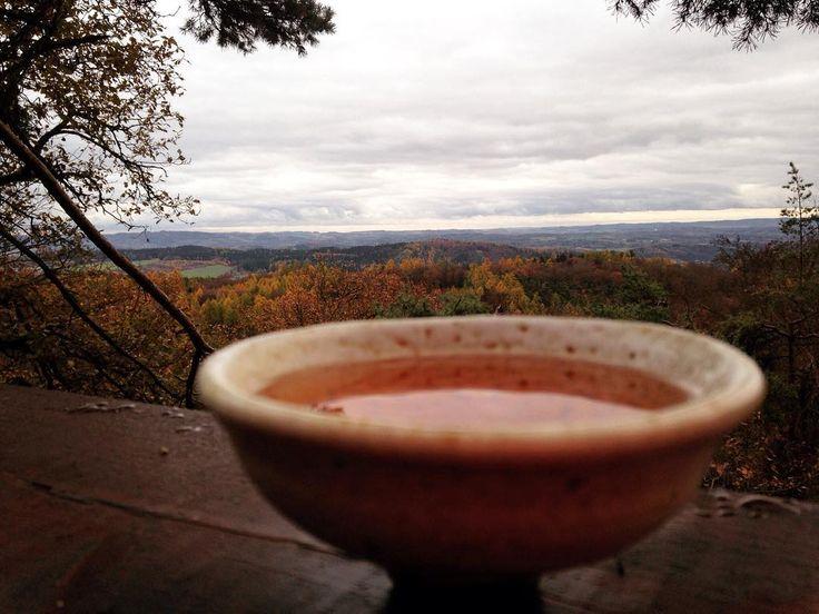 #naturelovers #klubkocestuje #teatime #tealovers #teaaddict #view #forest Čajování na Gryble!#klubkocajuje🌳🌲☕️