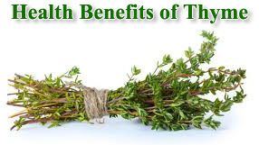 8 Health Benefits of Thyme | Natural Alternative Remedy