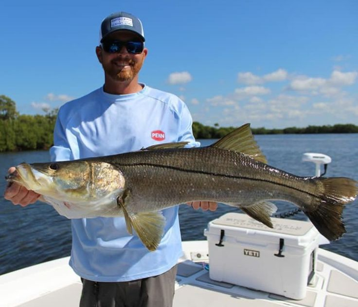 Captain Andrew with an overslot snook. This fish was