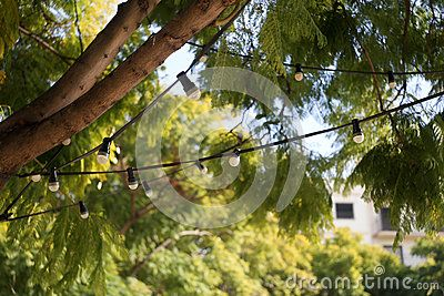 Lighting hanging light energy bulb electrical lightbulbs lamp fixtures idea inspiration environment string party bulbs saving decoration lightbulb eureka ideas lights