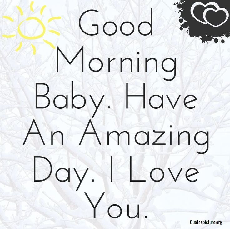 I M Sorry For Everything Morning Love Quotes Good Morning My Love Good Morning Quotes For Him