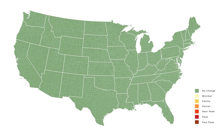 Fall Foliage Map USA - When to See Fall Leaves