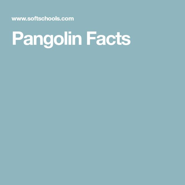 Pangolin Facts