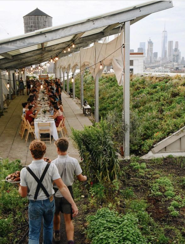 To really do up the day right, plan a brunch or a dinner party on this Brooklyn garden rooftop. Without many gardens in New York's urban jungle, Brooklyn Grange is utterly unique. | Photo Credit: Emmy Hagen