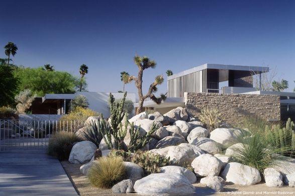 Kaufmann house garden using desert plants designed by for Palm springs landscape design