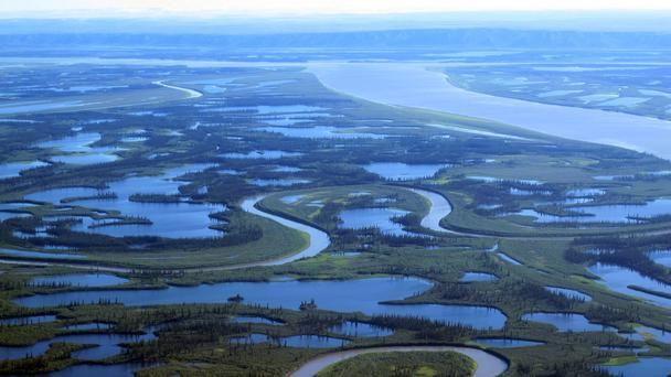 The mighty Mackenzie River splits into thousands of tiny waterways.