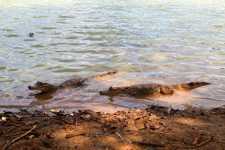 La Laguna, San Andrés Islas, fantástico!  http://www.turiscolombia.com/viajes-paquetes-y-planes-turisticos-en-colombia.html