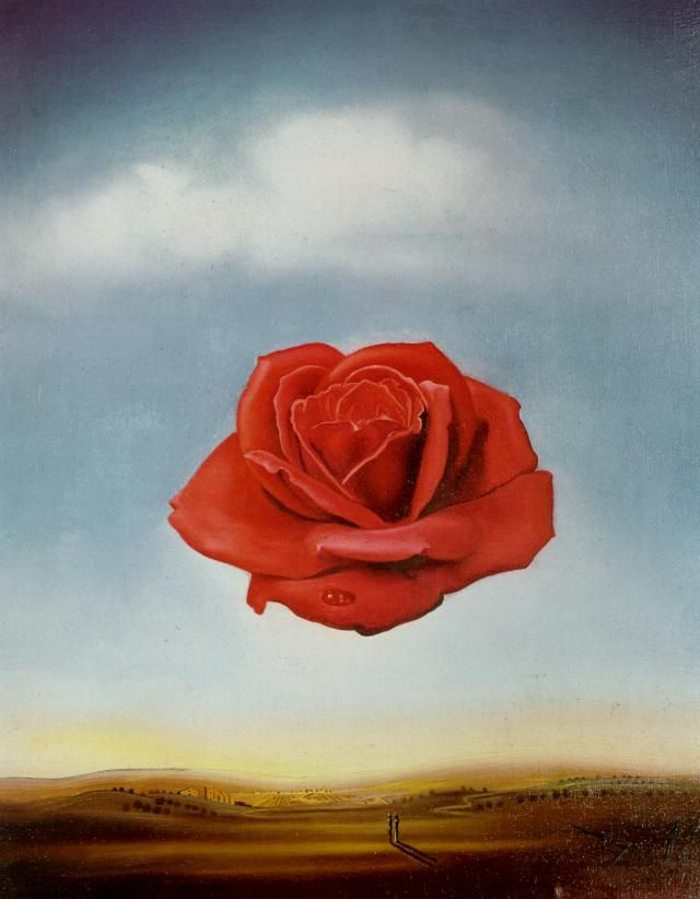 Meditative Rose (1958) by Salvador Dali
