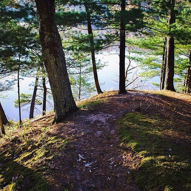 anyone up for a hike along the manistee river photo